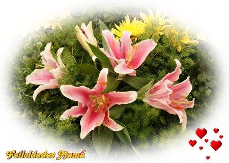 flores_exoticas-dsc02293-a12